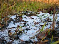 Sztuczny śnieg mineralny, trawa.