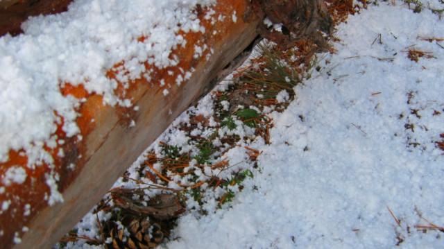 Sesja fotograficzna, śnieg leżący.