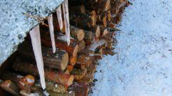 Zimowa sesja fotograficzna, jesień 2012.