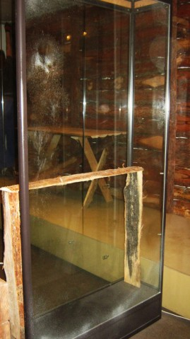Gablota na eksponaty muzealne pokryta sztucznym mrozem.